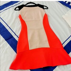 Zara Woman Colorblock Dress